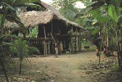Indigenous reserve in Costa Rica