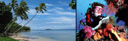 Diving tours and beach stays
