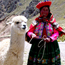 Dans les Andes Péruviennes / In the Peruvian Andes